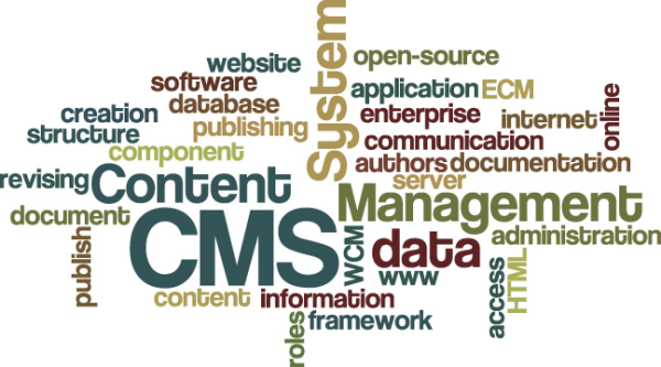 content management sysyem
