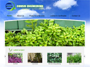 Corporate website for Consis Pte Ltd