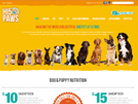 E-commerces website design for H5 Paws
