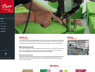 Corporate website design for Pure Color